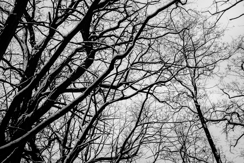 2015-01-31-trebus-winter-landschaftsfotografie-3