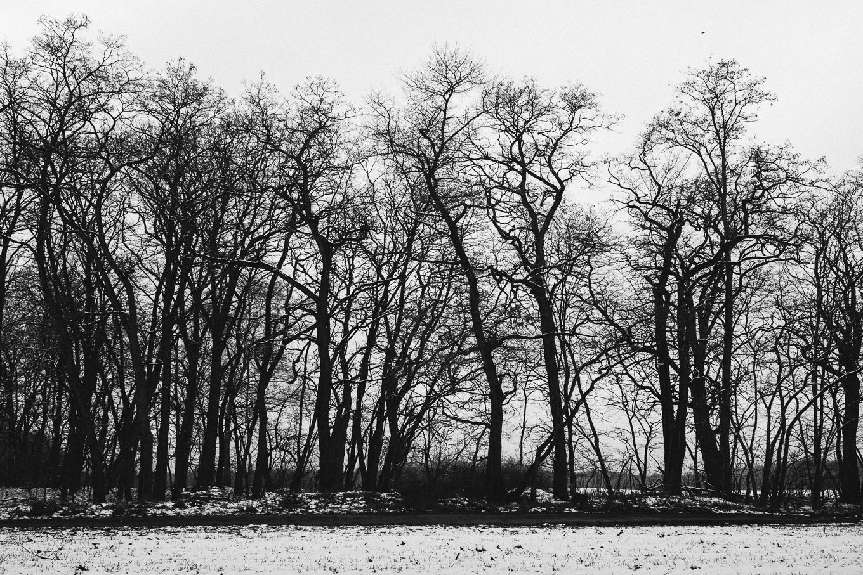2015-01-31-trebus-winter-landschaftsfotografie-5