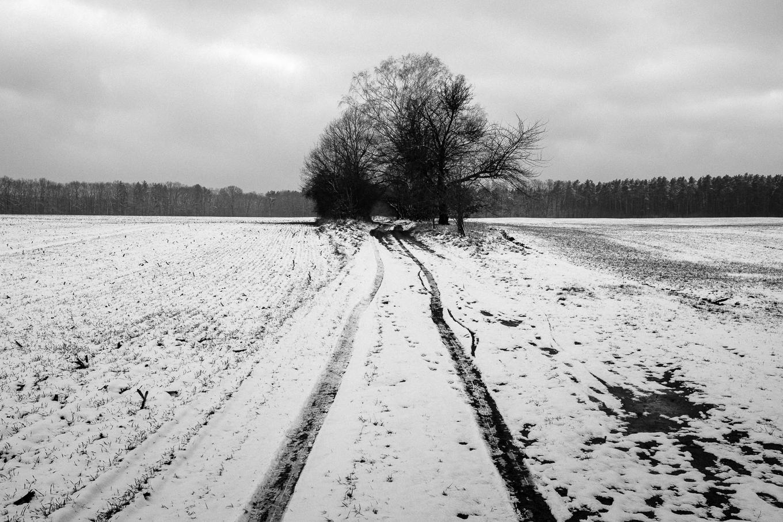 2015-01-31-trebus-winter-landschaftsfotografie-6